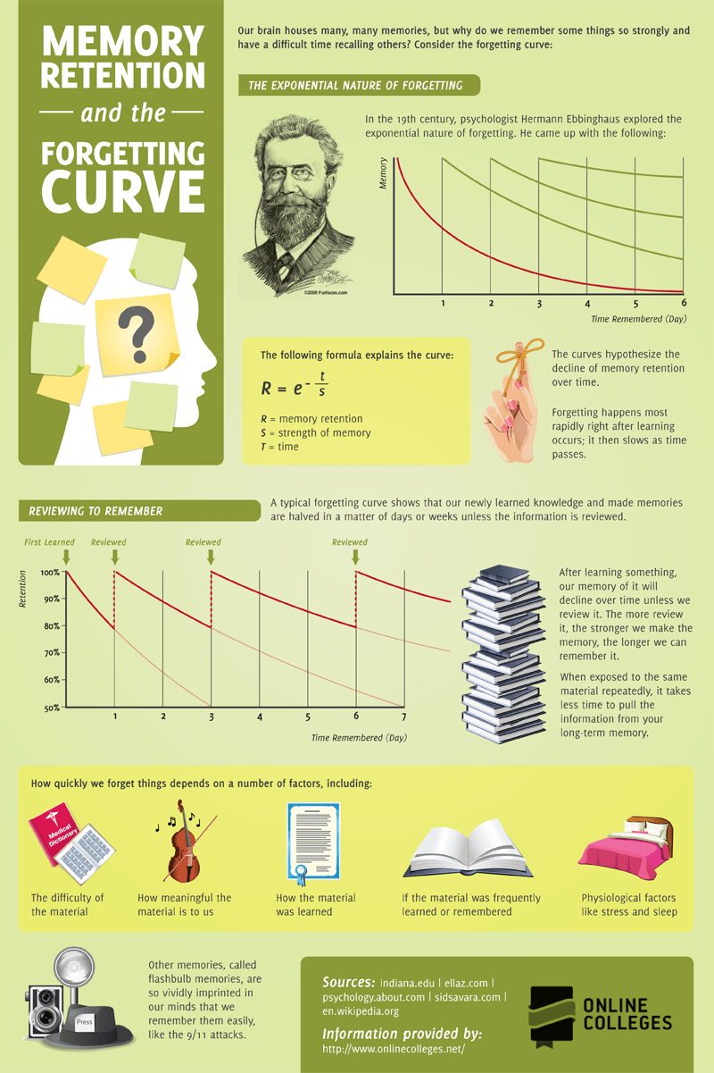 Memory Retention And The Forgetting Curve Infographic E