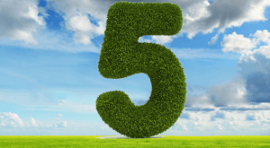 Image for 5 Must-Know Elements of Learning to Develop E-learning Courses [Infographic]