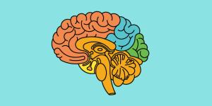 Image for Utilizing Psychology in Instructional Design