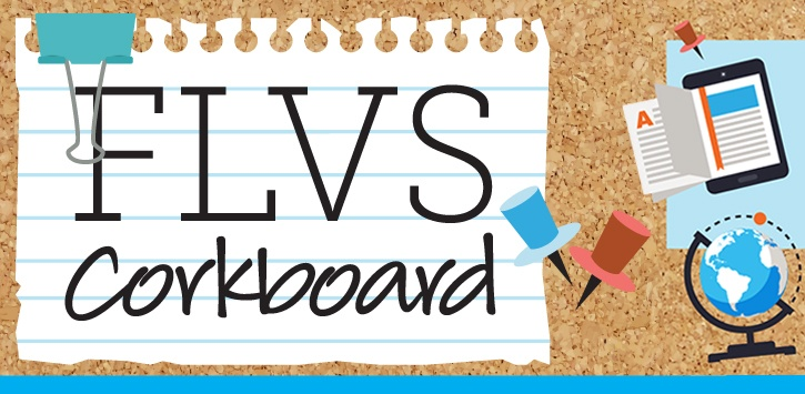 flvs homeschool Learn more about careers at florida virtual school and view our open positions.